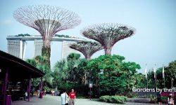 SINGAPUR: Si no hay experiencias me las invento